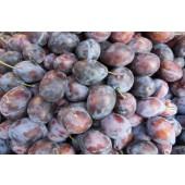 Prune Quetsche (les 500g)