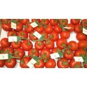 """Tomate en grappe """"Rabelais"""" (les 500g)"""