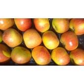 Pomme Bénédictin (la pièce)
