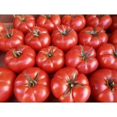 Tomate Rebellion (les 500g)