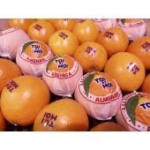 """Orange """"toi et moi"""" (la pièce)"""