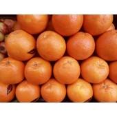 Orange  (la pièce)