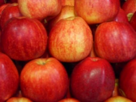 Pomme Royal-Gala (la pièce)