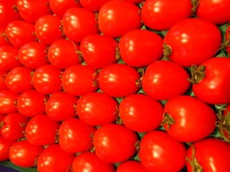 Tomate allongée (les 500g)