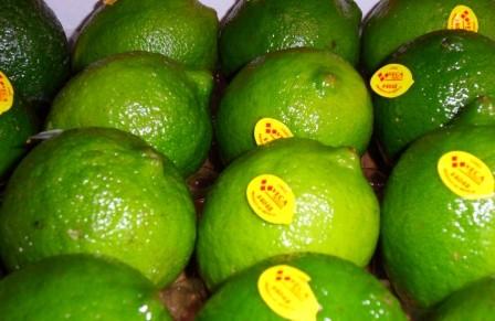 Citron vert  (la pièce)