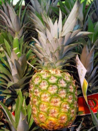 Ananas Sweety (la pièce)