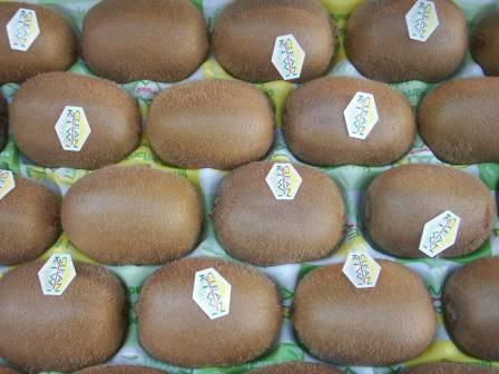 Kiwi (les 2)