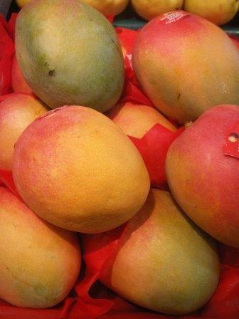 Mangue (la pièce)