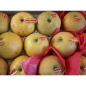 Pomme Chanteclerc  (la pièce)
