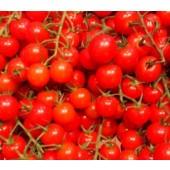 Tomate Cerise en grappe (les 250g)