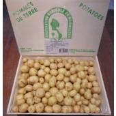 Pomme de terre nouvelle  de Noirmoutier:(les 500g)
