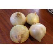 Oignon doux (les 500g)