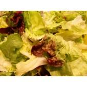 """Salade mélangée """"Mesclun""""(les 125g)"""