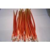 Rhubarbe (les 500g)