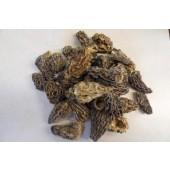 Morilles séchées (les 10g)