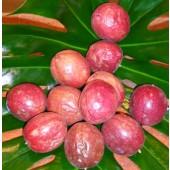Fruit de la Passion (la pièce)