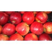 Pomme Pirouette (la pièce)