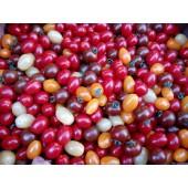 Tomate cerise mélangée (les 500 g)