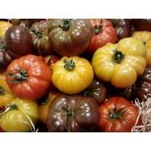 Tomate Mélangée (les 500 g)