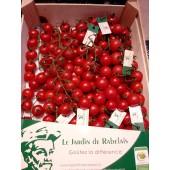 """Tomate Cerise""""Rabelais"""" (les 200g)"""