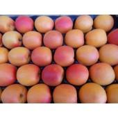 Abricot   (les 500g)