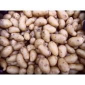Pomme de terre  (les 500 g)