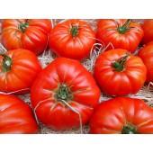 Tomate Marmande (les 500g)